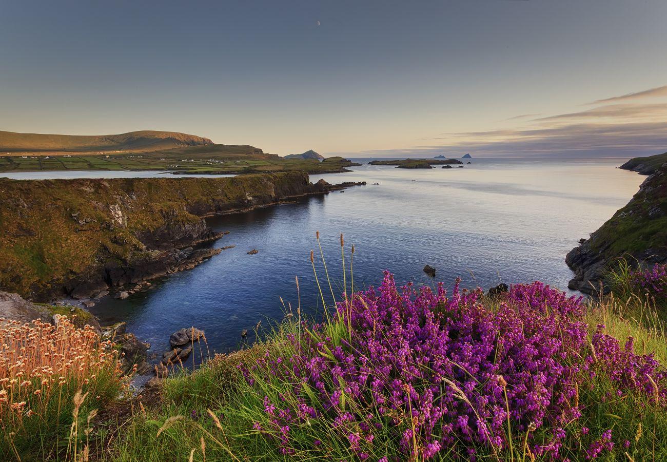 Valentia Island, County Kerry, Ireland