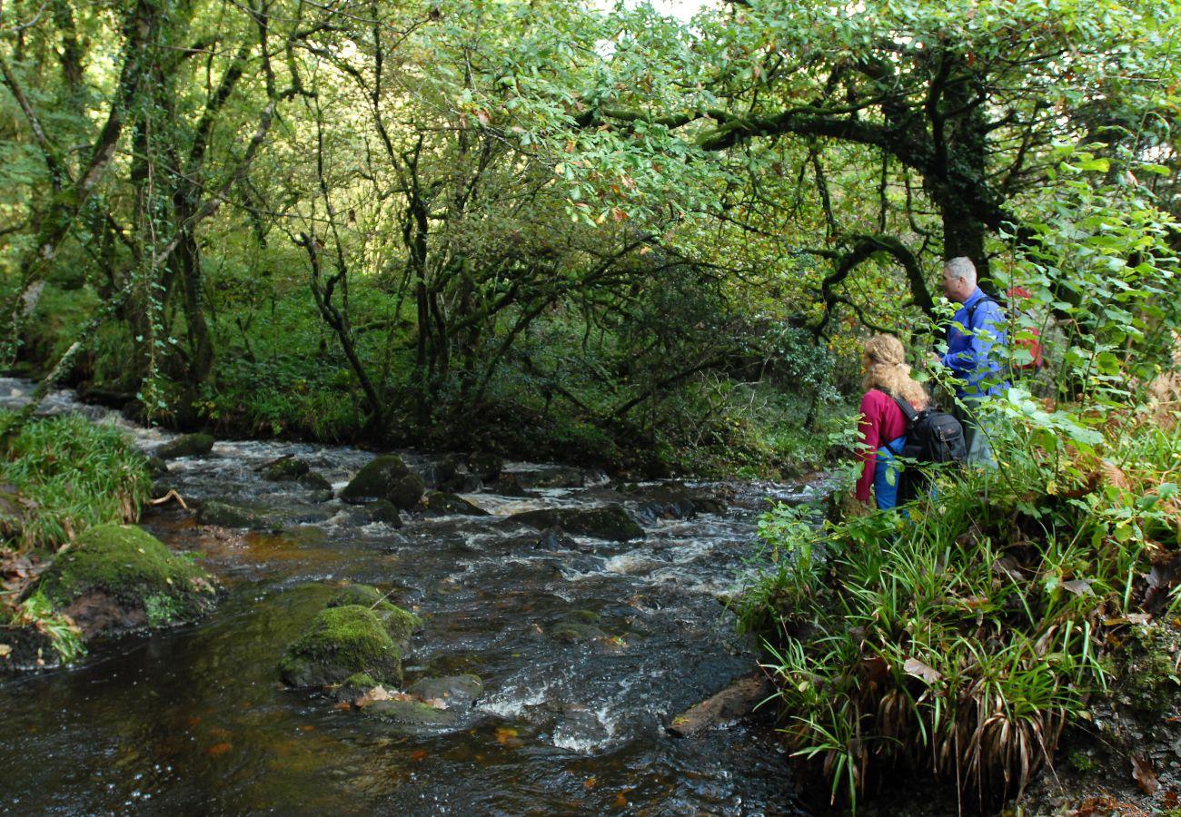 Ballyhoura Mountain Lodges, Self Catering Holiday Homes in Ballyorgan, County Limerick