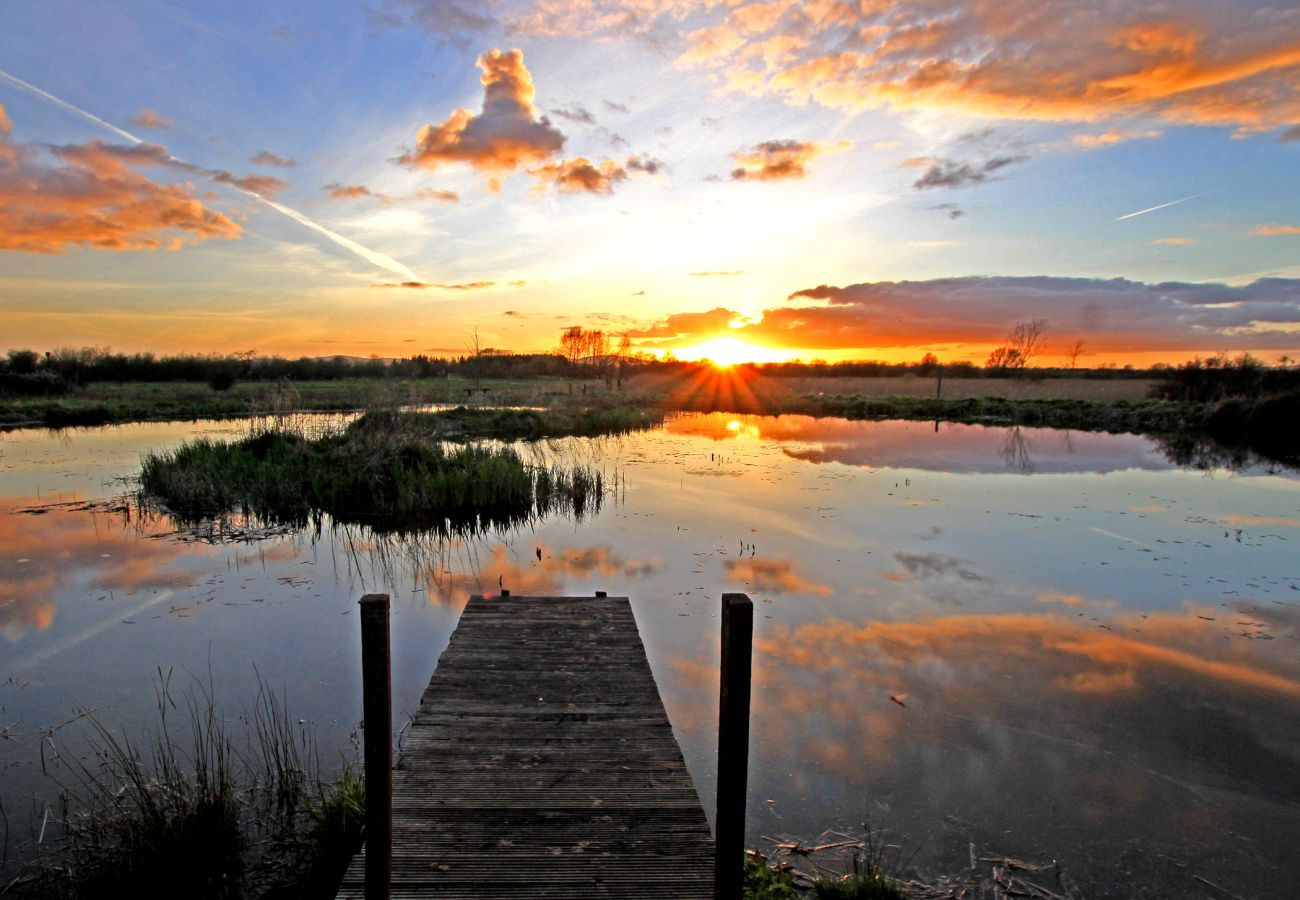 Cabragh Wetlands, Thurles, County Tipperary