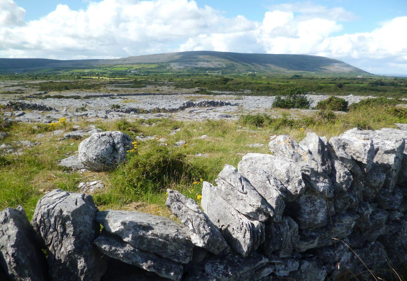 Burren National Park County Clare Ireland