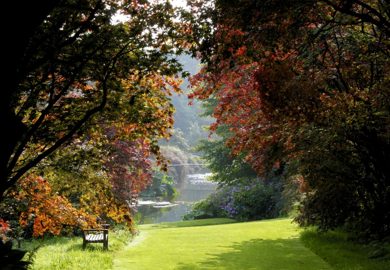 Mount Usher Gardens Ashford Wicklow Ireland