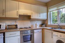 House in Blessington - Avon Ri Holiday Homes