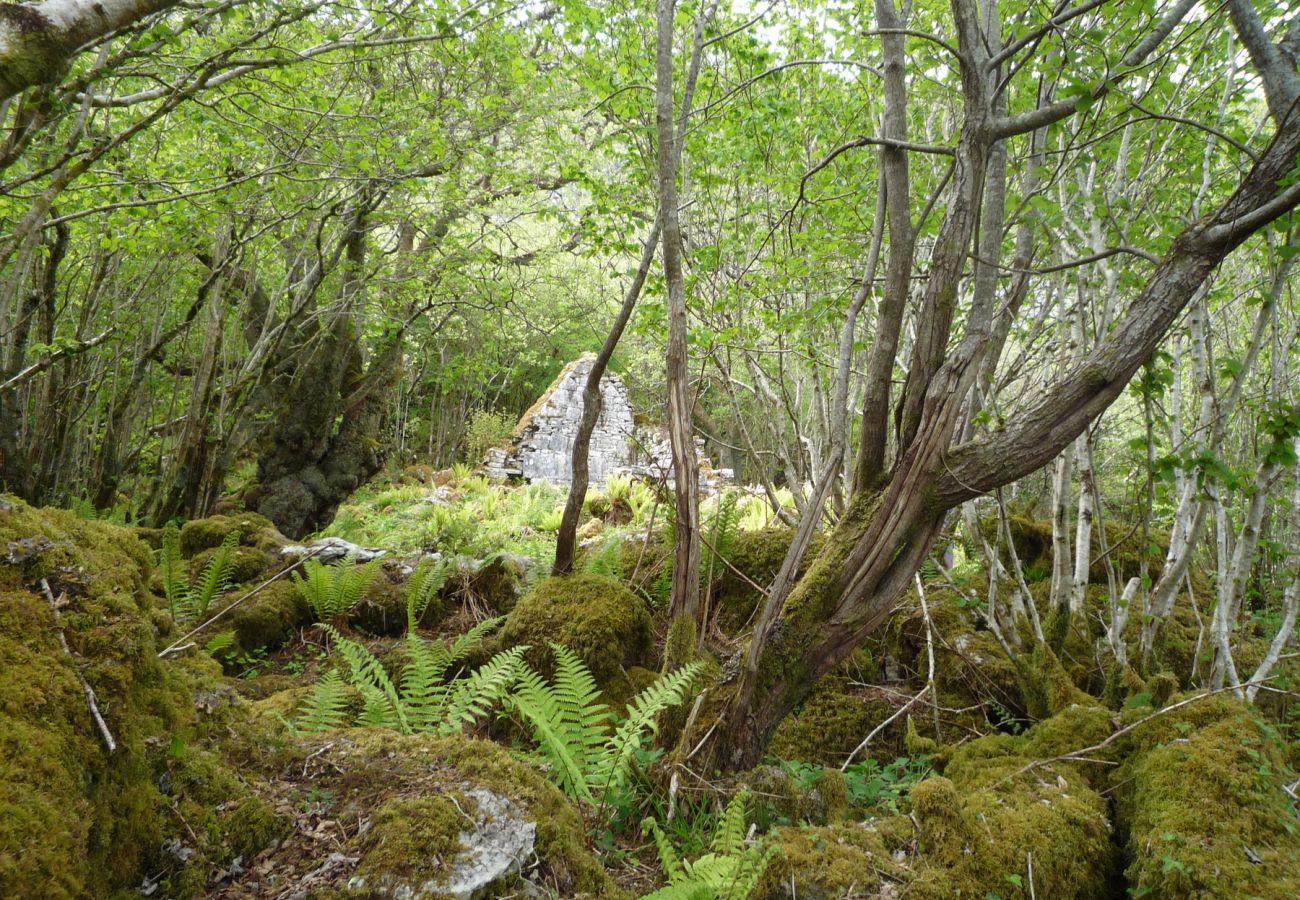 St Colman's Church Eagle Rock Burren County Clare © Failte Ireland | Trident Holiday Homes
