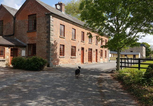 Piltown - House