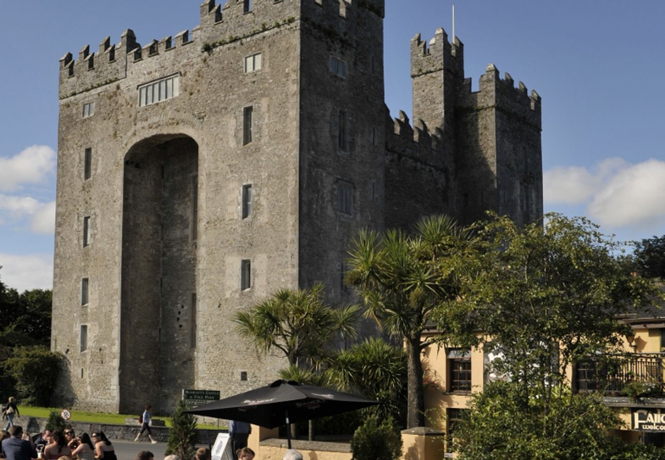 Bunratty Castle and Folk Park Holiday Homes in Clare Ireland