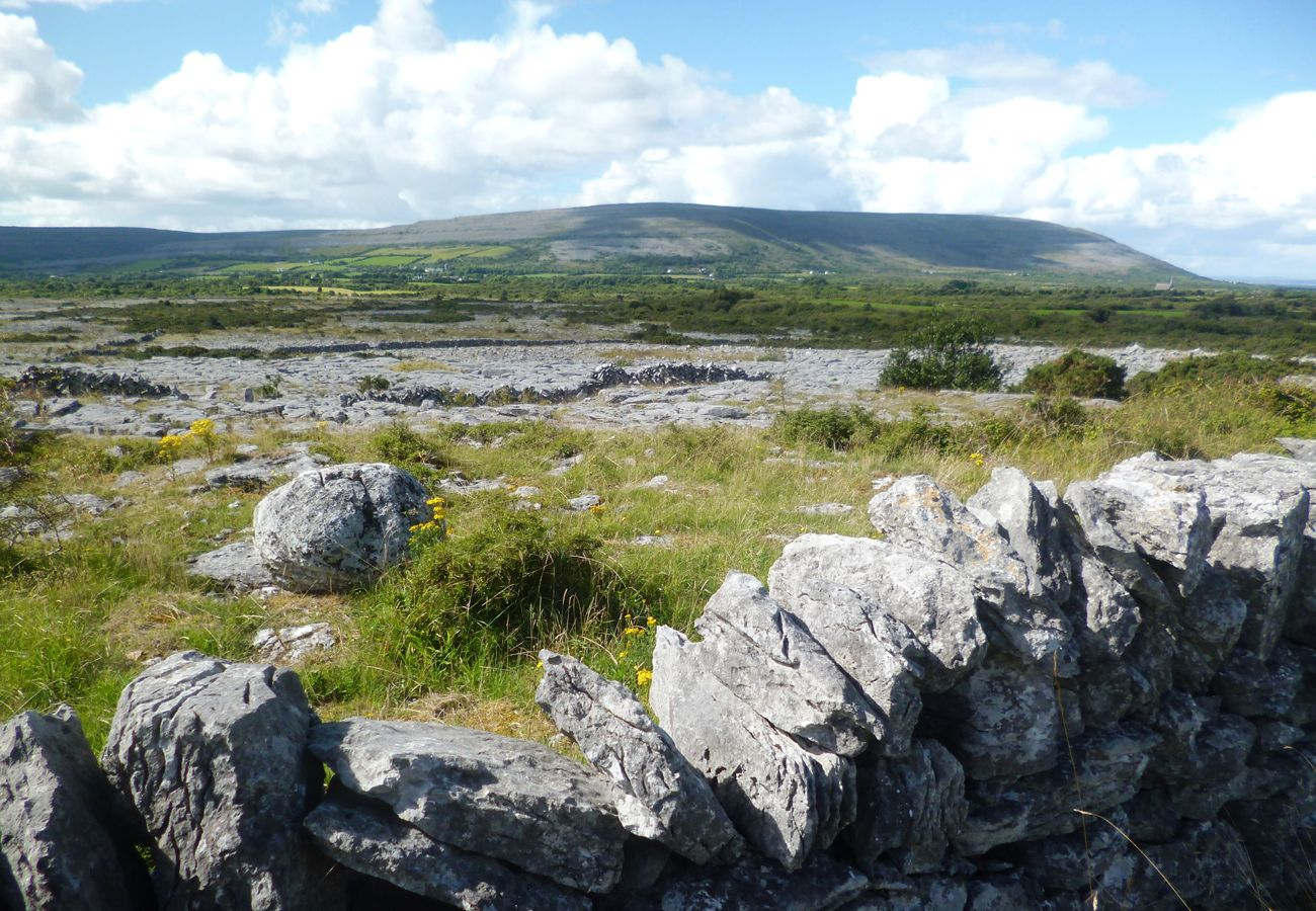 Burren Limestone Wall Holiday Homes in Clare Ireland
