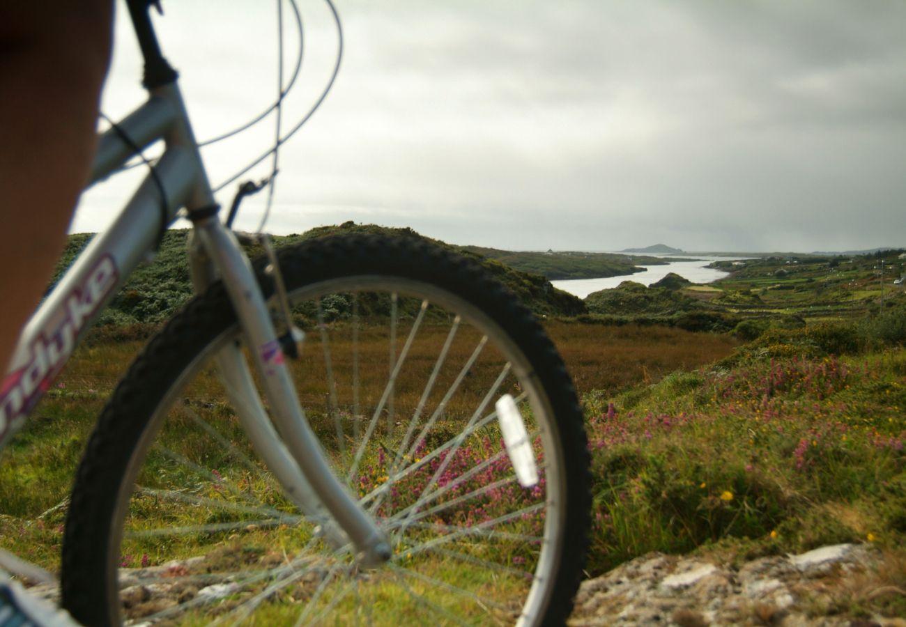 Connemara - Letterfrack Mountain - Galway - Tourism Ireland