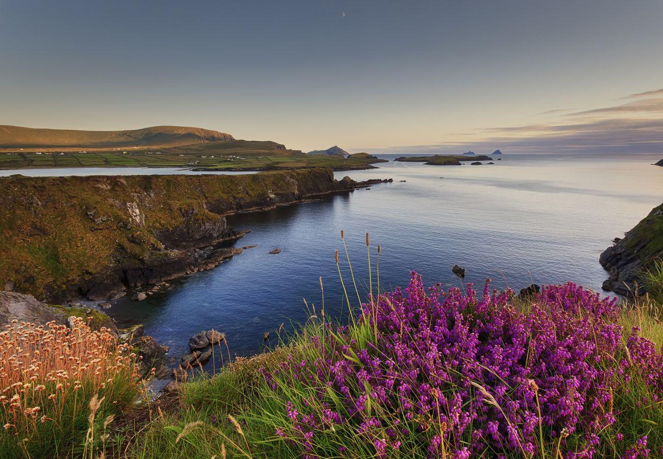 Valentia Island County Kerry Ireland