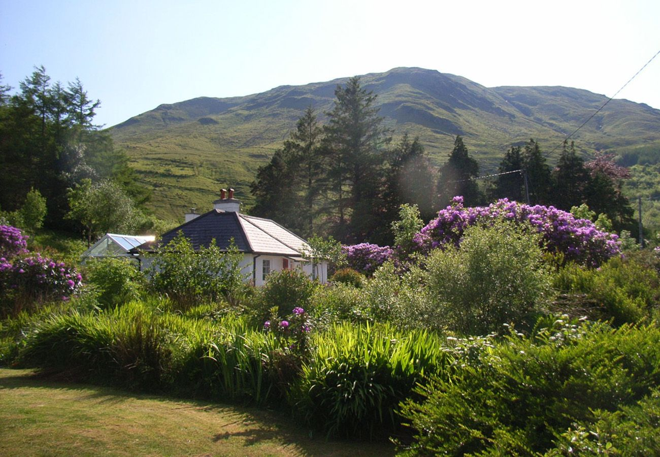 Ashmore Cottage, Cosy Holiday Cottage in Leenane, Connemara, County Galway