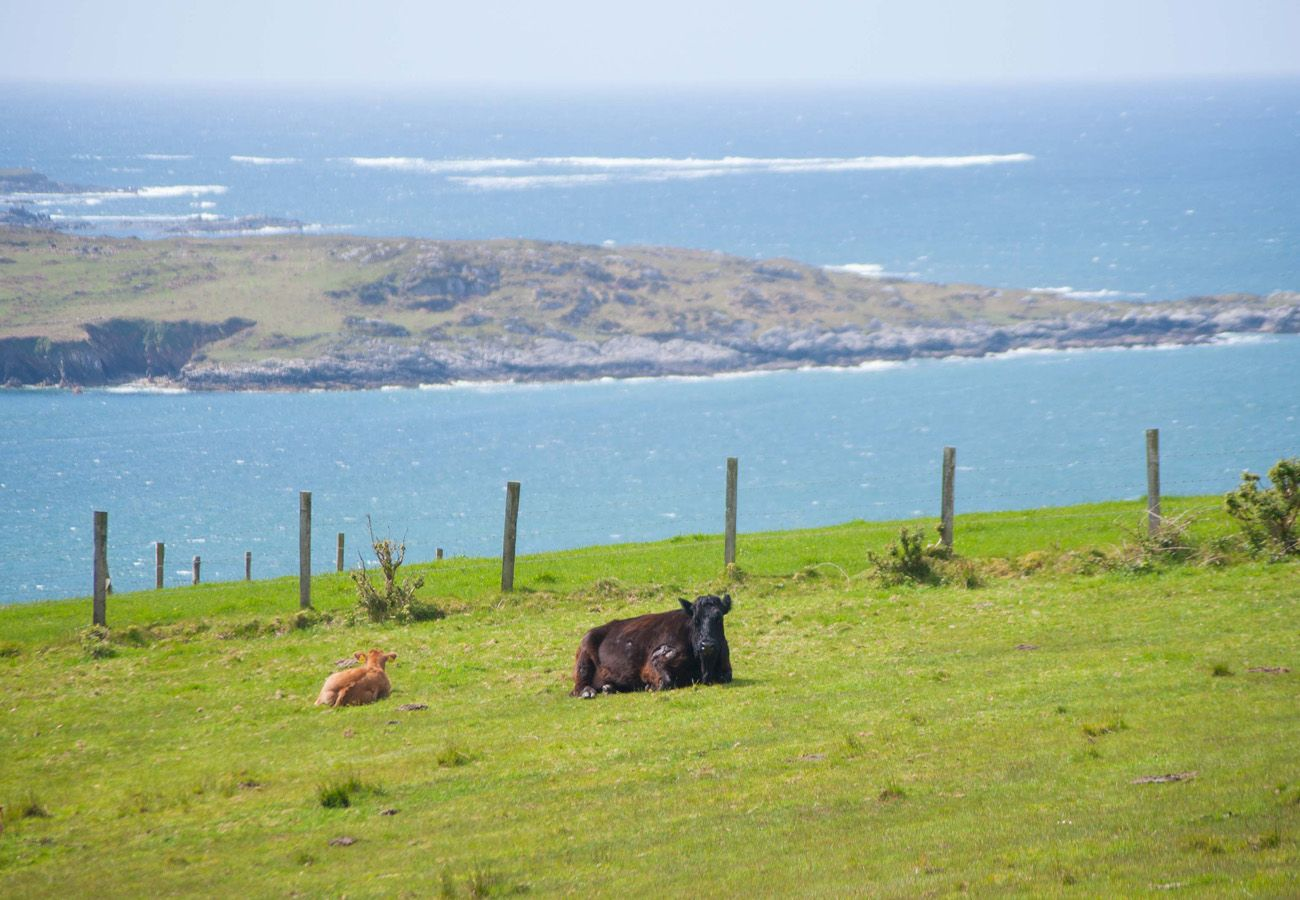 Sky Road Holiday Home, Sea View Holiday Home in Clifden, Connemara, County Galway