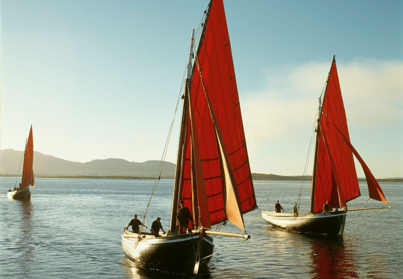 Galway Hookers Traditional Sailing Boats Betraboy Bay image Toursim Ireland
