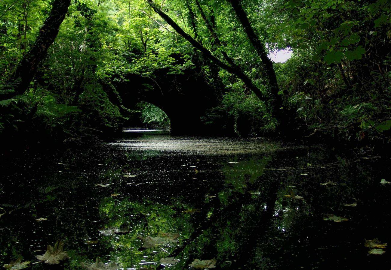Rivers in Connemara, Galway, Ireland