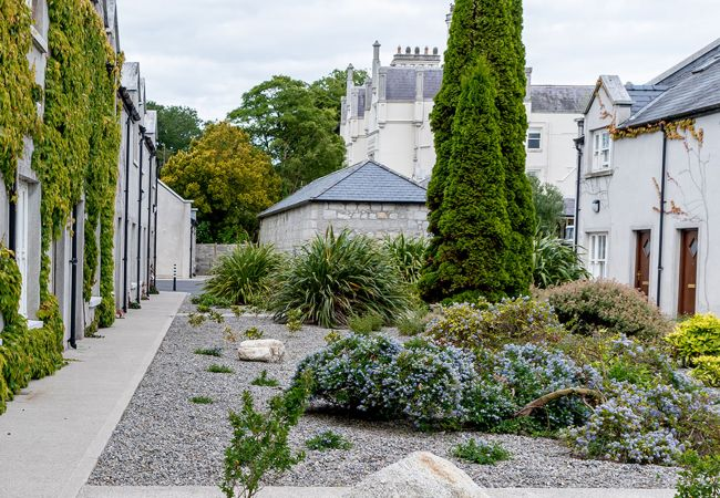 Explore Ireland's Ancient East