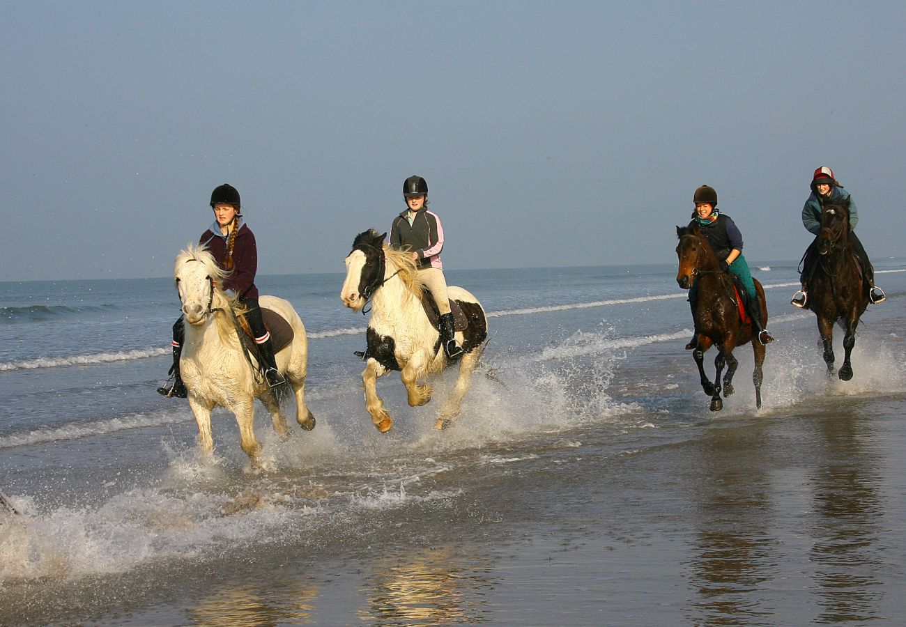 Horse Riding on Rossbeigh Beach, County Kerry © Fáilte Ireland