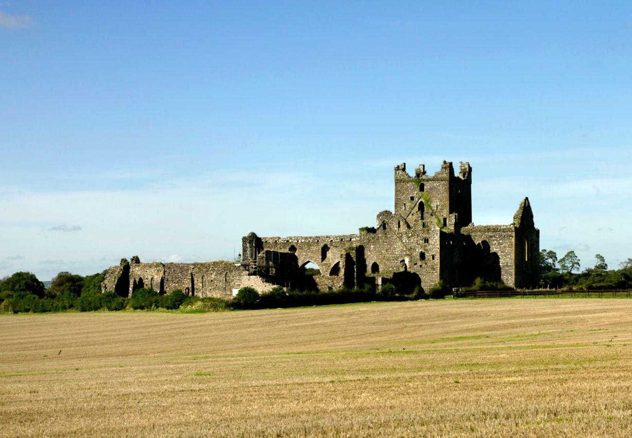 Dunbrody Abbey near Aurtherstown in Wexford © Failte Ireland