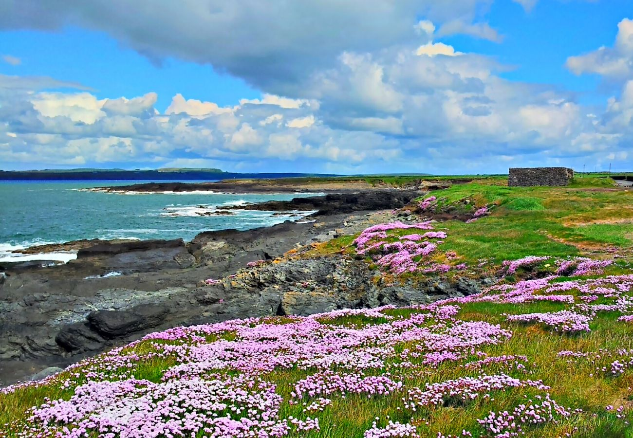 Hook Head, County Wexford © Hook Tourism