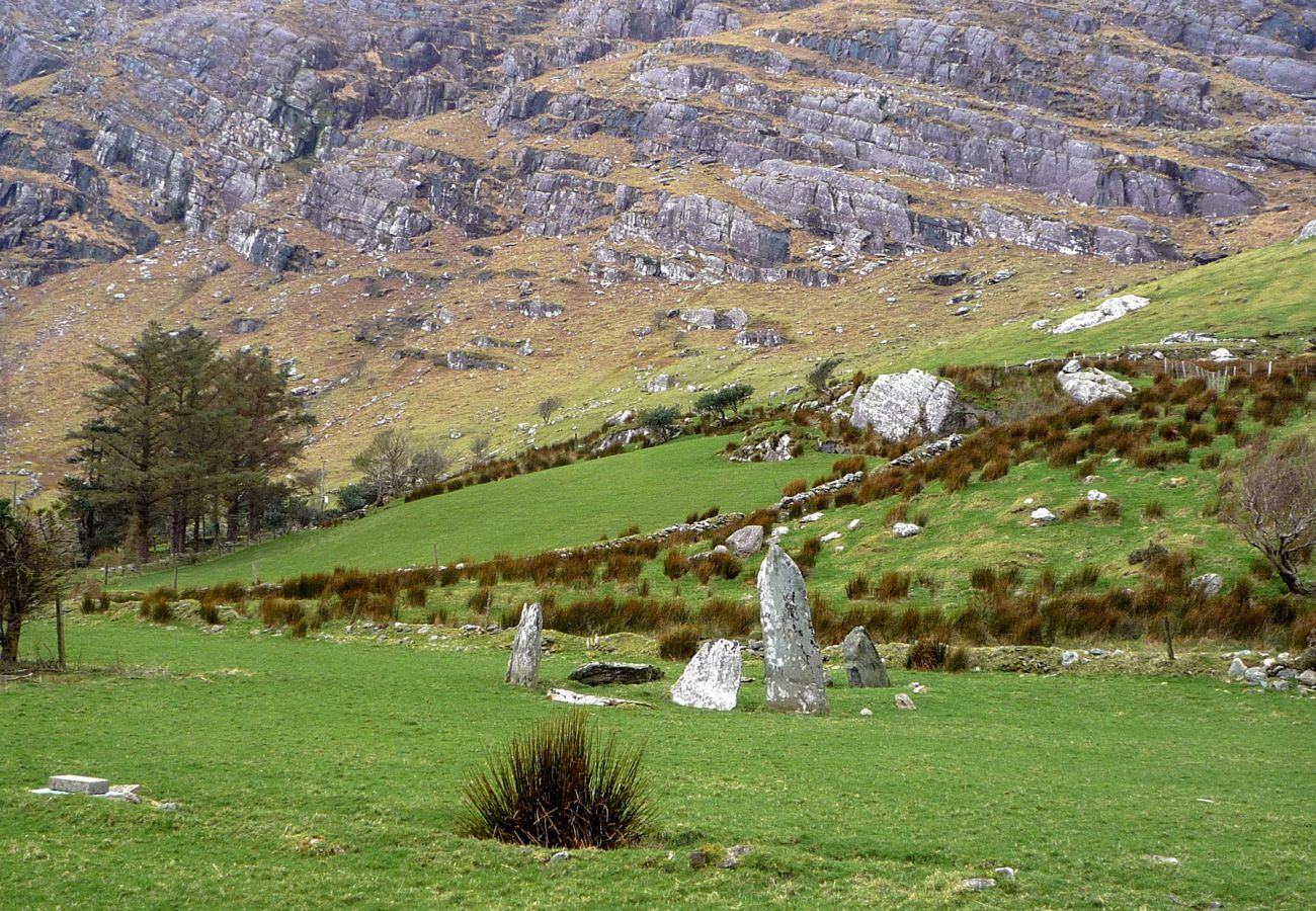 Kenmare Mountainside, County Kerry, Ireland