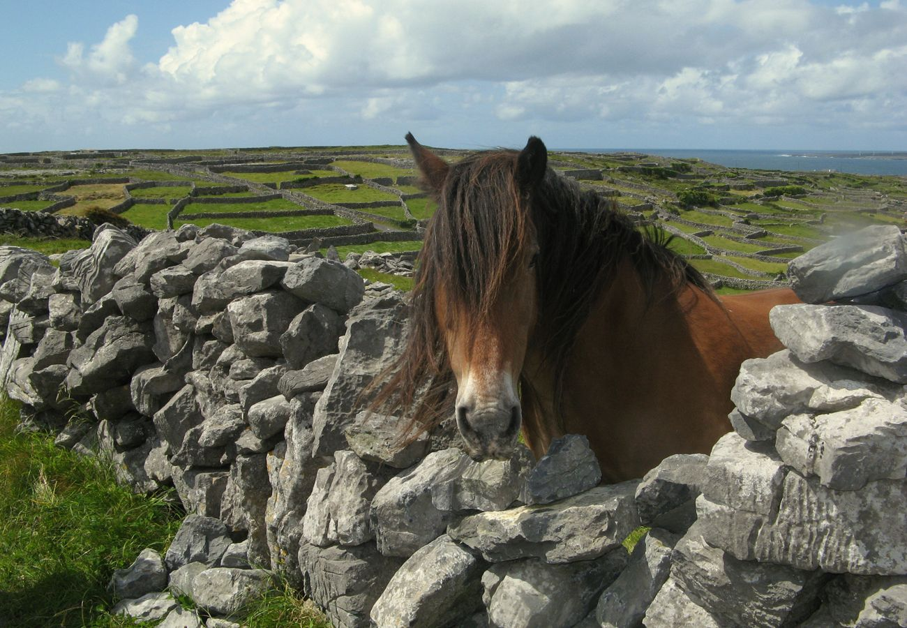 Stone Walls, Ring of Kerry, County Kerry