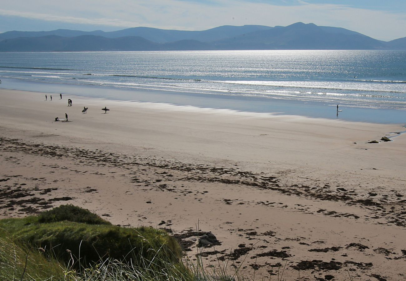 The Gathering, Inch Strand, County Kerry