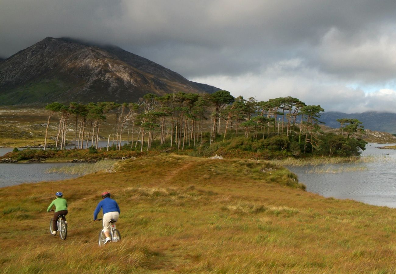 Cycling in Connemara Galway © Tourism Ireland