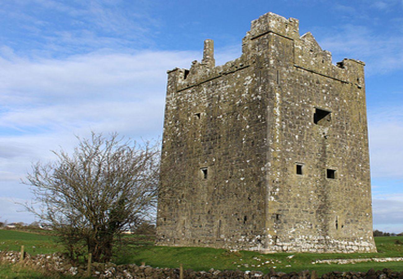 Isert Kelly Castle, Kilchreest, County Galway