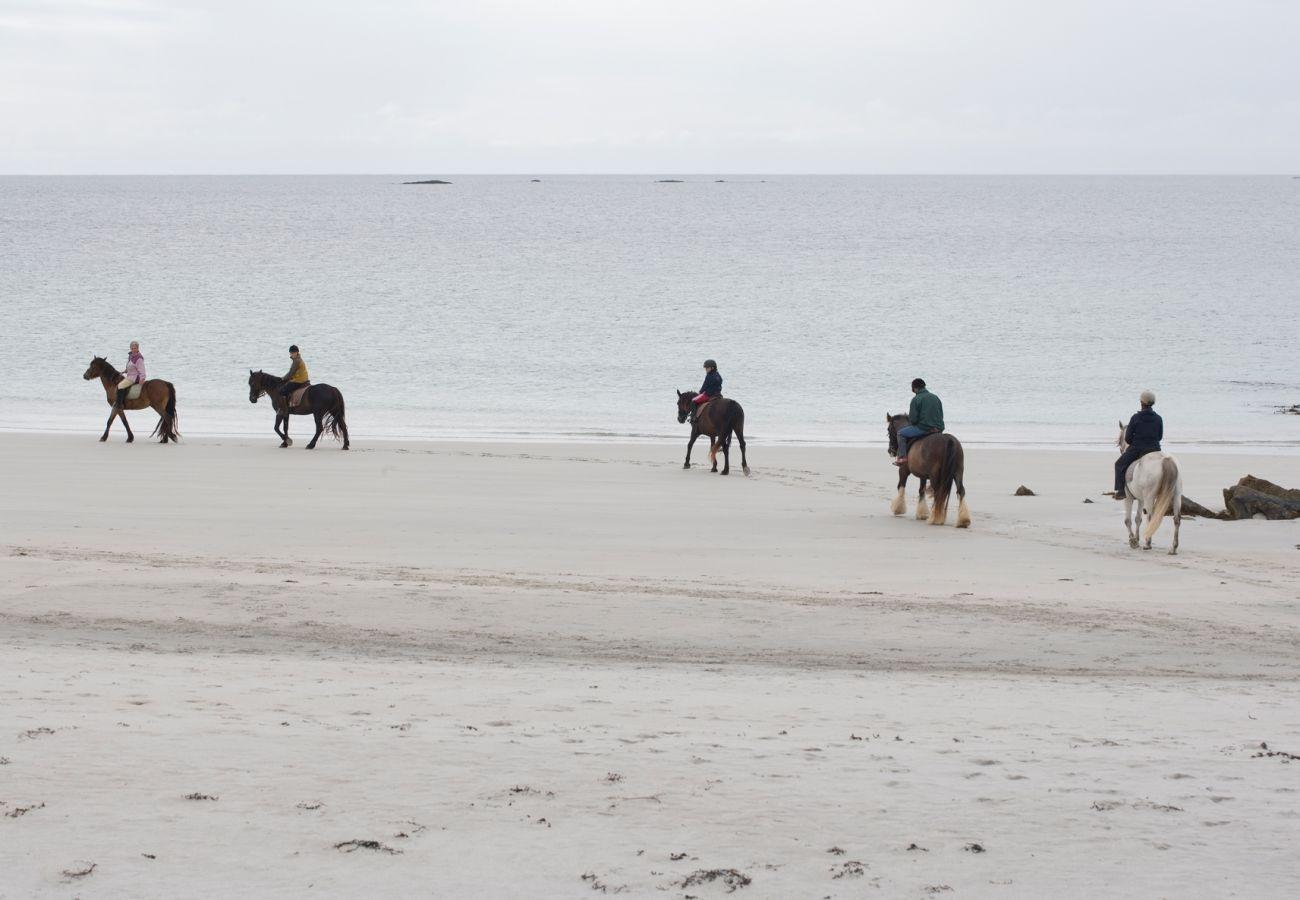 Cleggan Beach Horse Riding, County Galway