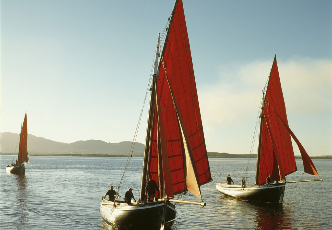 Galway Hookers Traditional Sailing Boats Betraboy Bay County Galway © Tourism Ireland & Failte Ireland