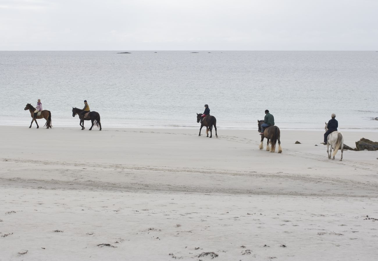 Horse Riding Beach, County Galway © Tourism Ireland & Failte Ireland