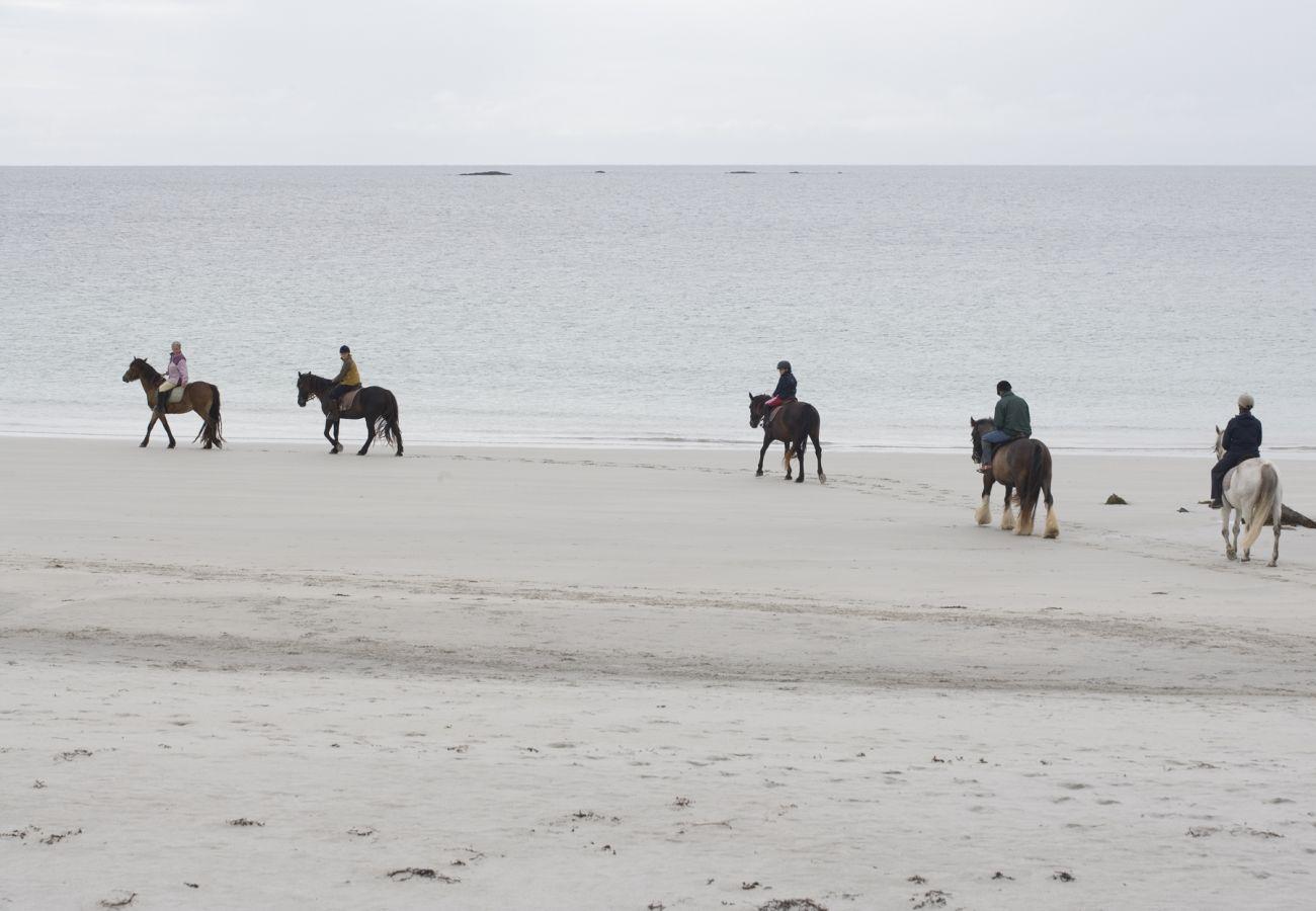 Horse Riding Beach, County Galway © Tourism Ireland & Failte Ireland