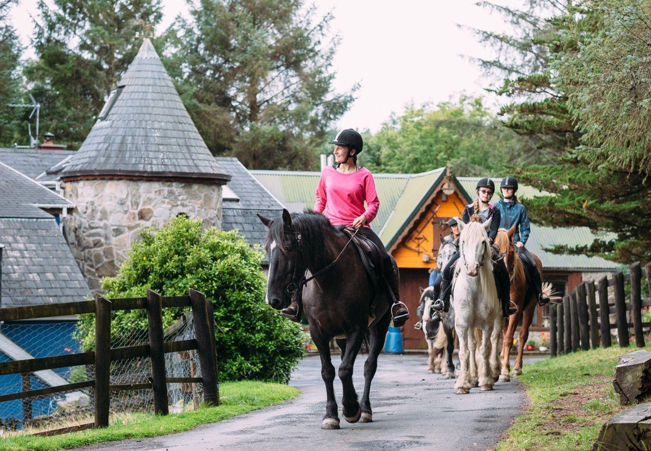 An Síbín Equestrian Centre, Co Clare © Eamon Ward