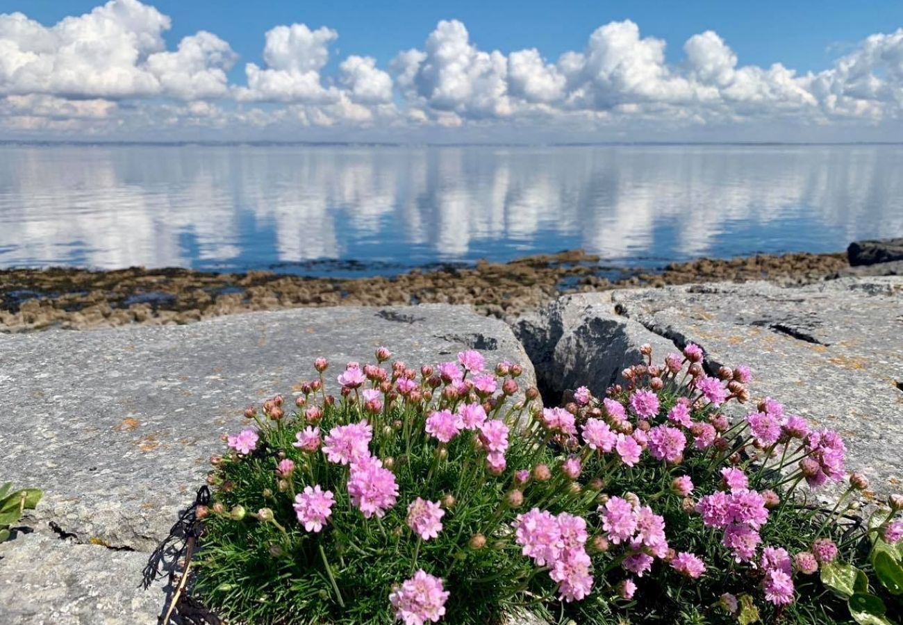 Wild Atlantic Way, Ballyvaughan, County Clare