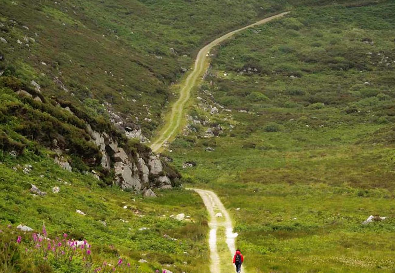 The Kerry Way, County Kerry