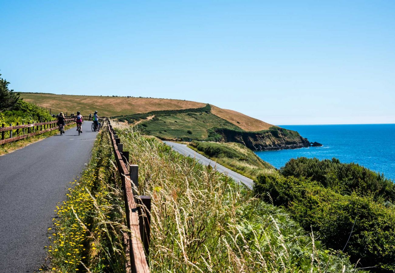 Waterford Greenway, County Waterford