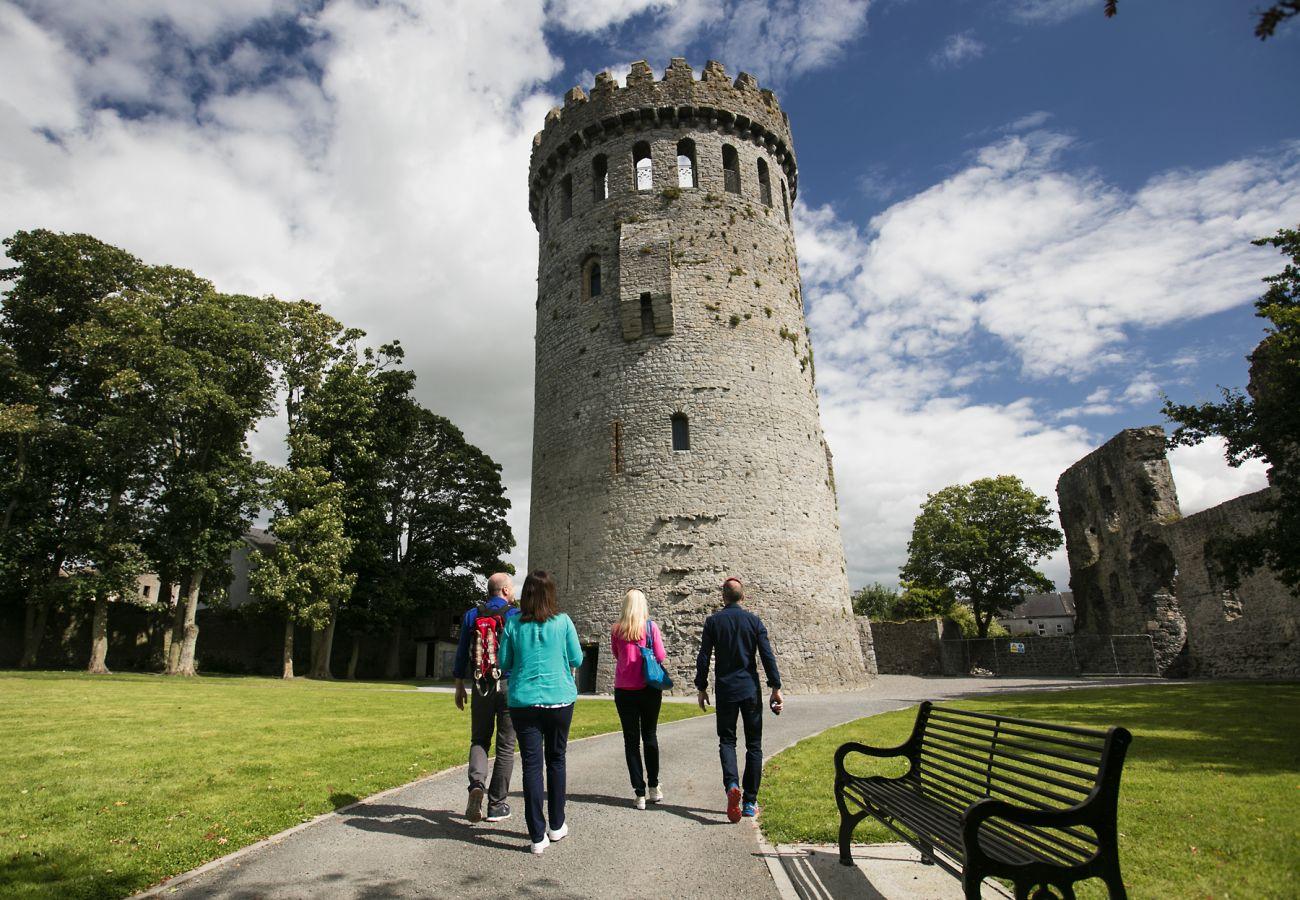 Nenagh Castle Co Tipperary Brian Morrison
