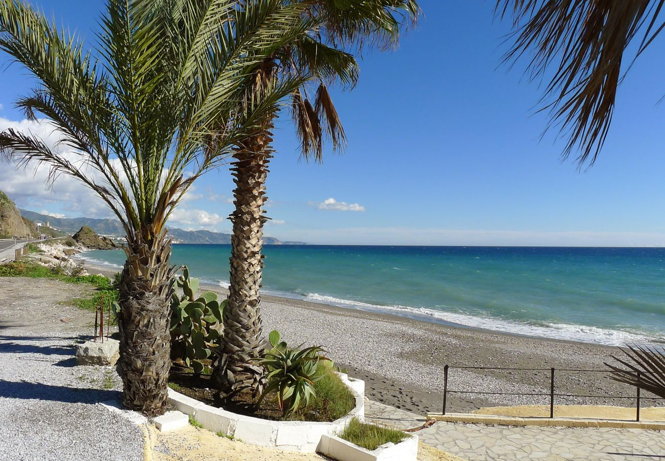 Apartment in Torrox Costa - R985 - Torrox Beach Club